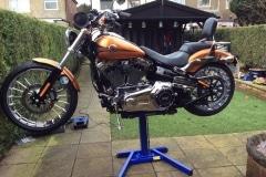 Big Blue Harley Davidson Jack